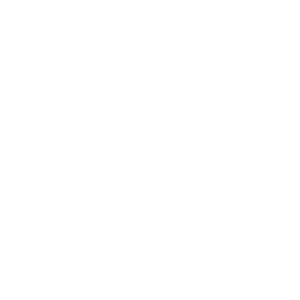 np_priest